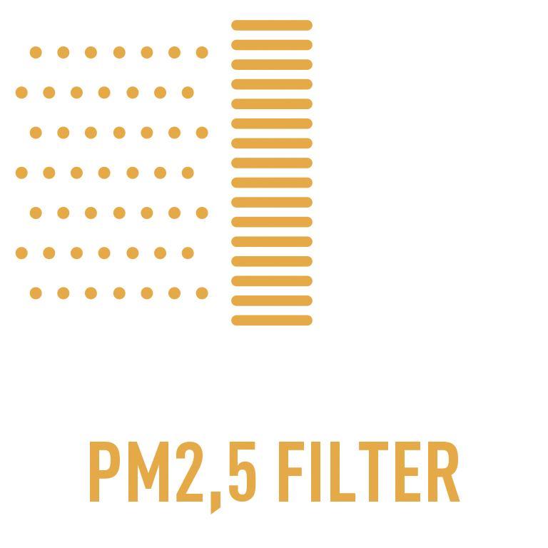 PM2 filter